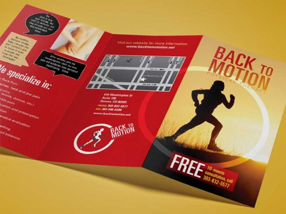 Back to Motion Brochure